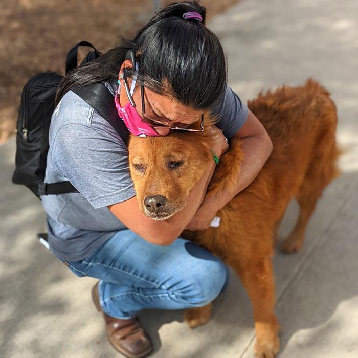 Un perro rescatado llamado Honey se ha reunido con su dueño tras 7 años de separación
