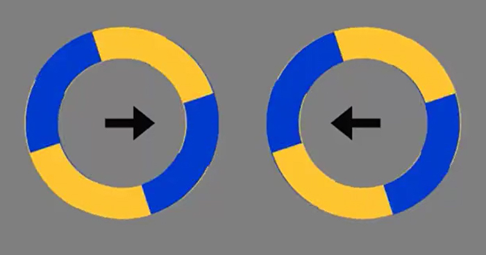 An Optical Illusion Where Circles Seemingly Move Out Of Place Has Become An Internet Sensation