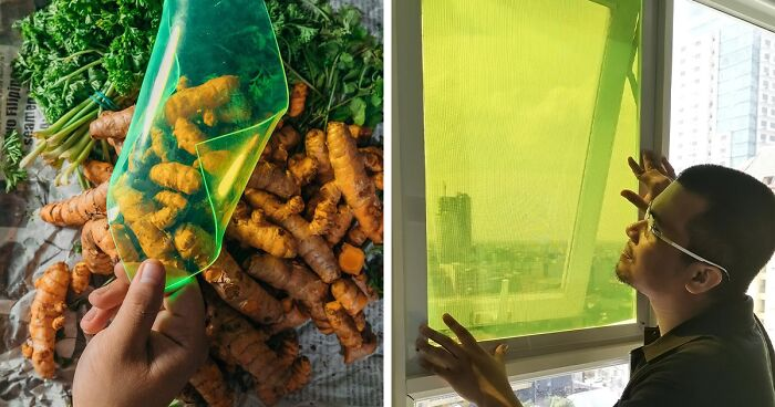 27 Year Old Student Creates Solar Panels Made From Food Waste That Can Produce Energy Even On Cloudy Days Bored Panda