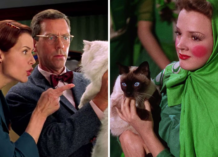 This Twitter Account Asks A Very Important Question: Is There A Cat In This Movie? (30 Pics)