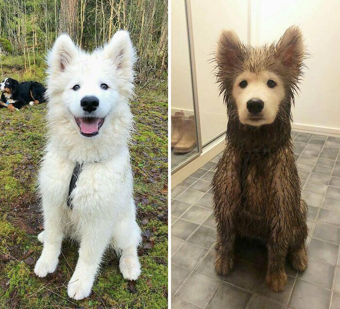 Antes y después de jugar