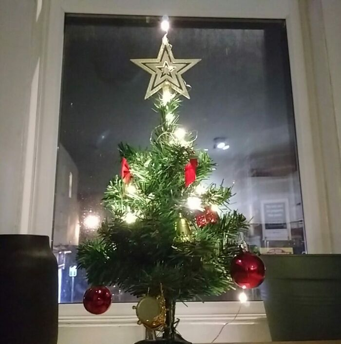 I Won't Be Travelling To See My Parents This Year, But My Mum Sent Me This Little Surprise Tree