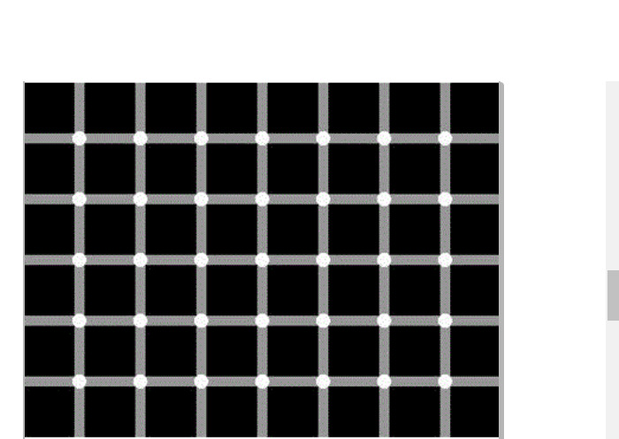 How Many Black Dots Do You See?