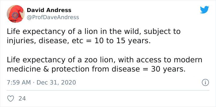 Lions-Dont-Wear-Mask-Politician-David-Kurten
