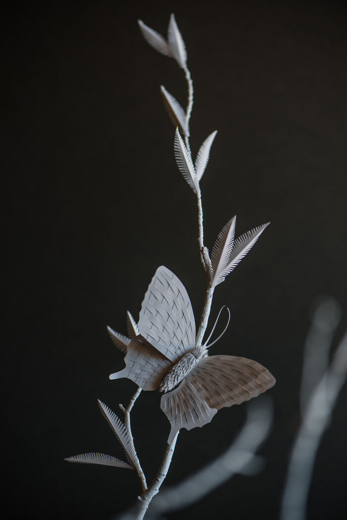 Paper Butterfly I Hand Cut During 2020 Pandemic Lockdown.