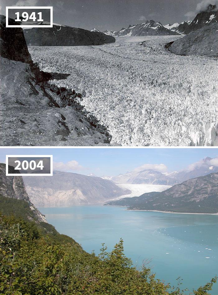 Derretimiento Del Glaciar Muir, Alaska