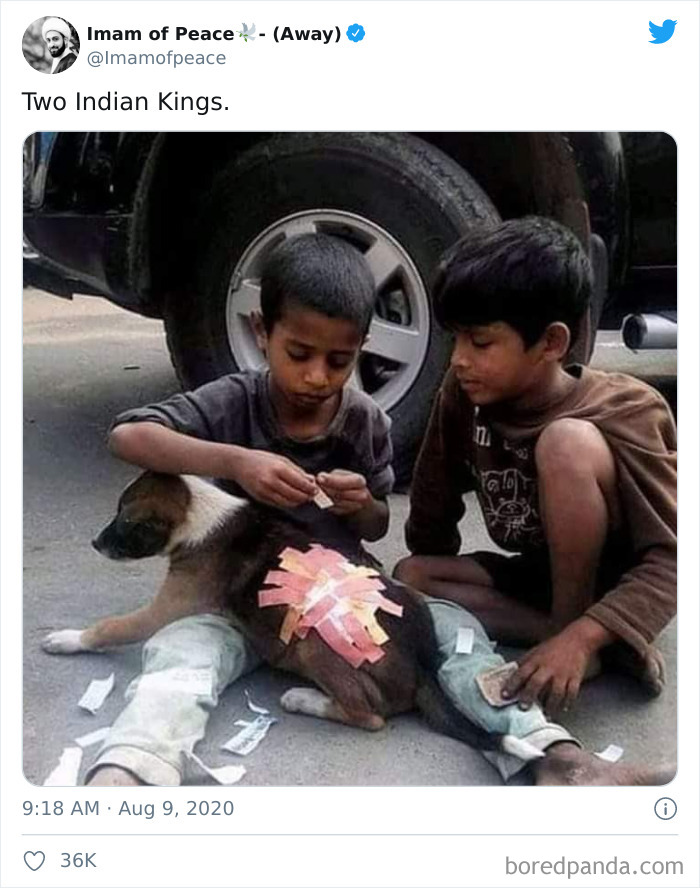 Two Street Children, With Barely Enough Money To Afford Slippers, Bandage An Injured Puppy