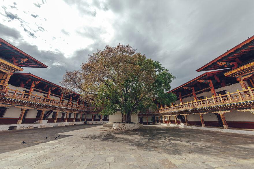 Courtyard Of Punaka-Dzong