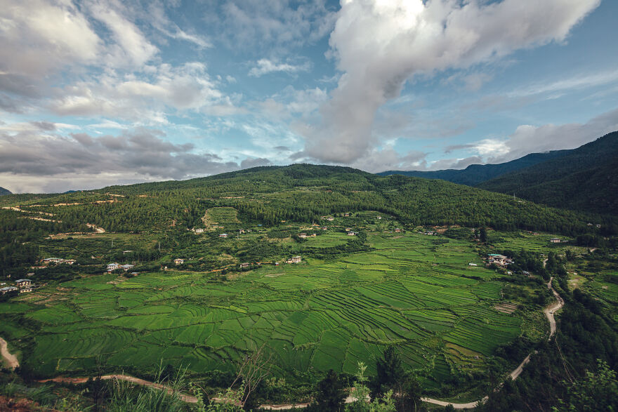 In Bhutan, A Lot Of Rice Is Grown In Terraced Rice Fields In The Mountains.
