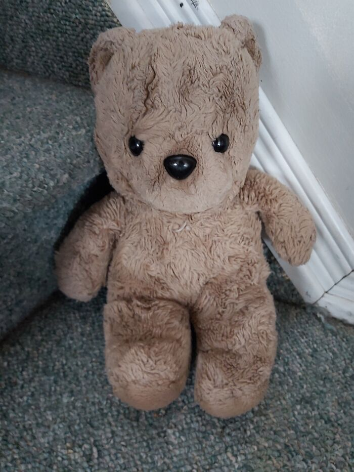 Meet Liz. She Is A 37 Year Old Gund Given To My Mother After Her Brain Surgery, Then Passed Down To Me When I Was 10