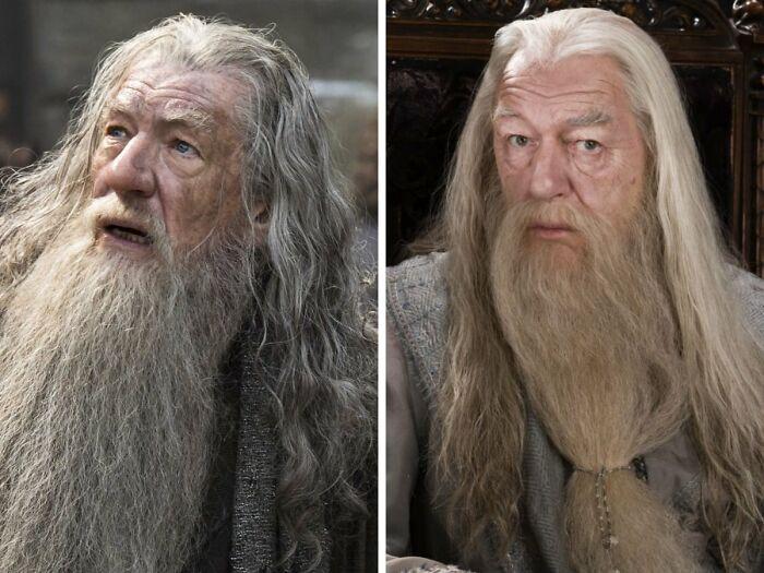 Ian Mckellen Turned Down The Part Of Albus Dumbledore In
