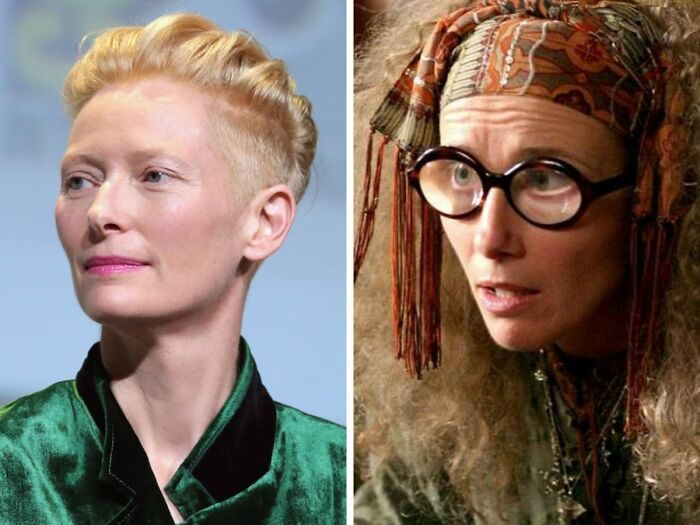 Tilda Swinton Was Offered The Part Of Sybill Patricia Trelawney In