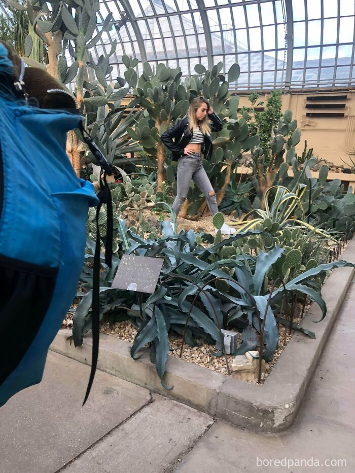 This Woman Stomped All Over The Plants In This Conservatory Despite Staff Repeatedly Asking Her To Stop To Get 'Instagram Model' Shots. The Area She Is In Is Off Limits