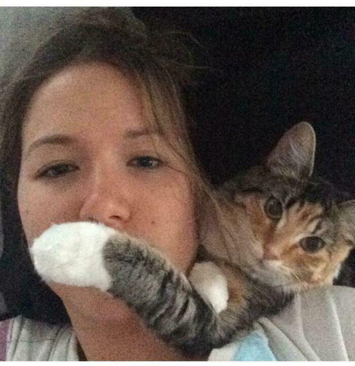 Silencio Humana, Estoy Mirando Los Gatos De Hombro