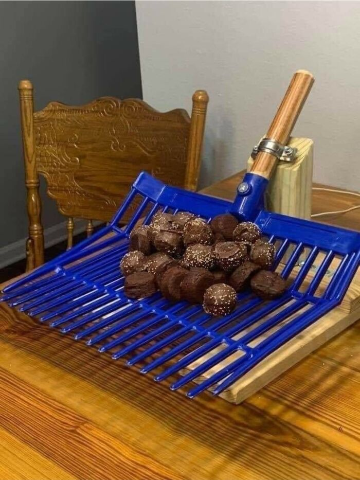 "Trufas con chocolate en forma de ""caca de caballo"" en un rastrillo para abono"