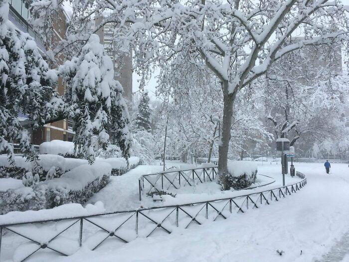Record Snowfalls In Madrid Today