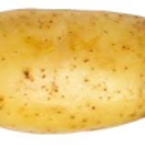 Potato the potato