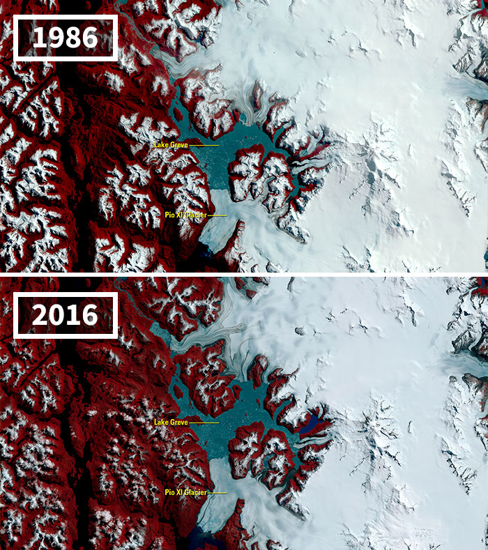 A Medida Que Los Glaciares Retroceden En Todo El Mundo, Uno Desafía La Tendencia