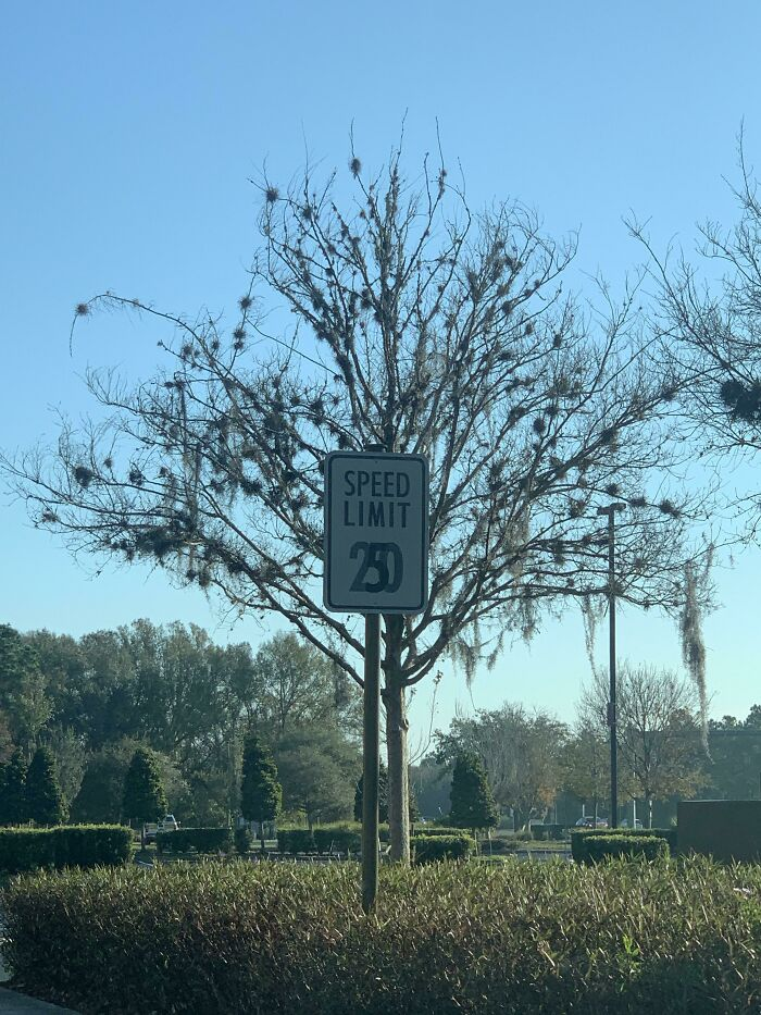 Changed The Speed Limit Sign Boss