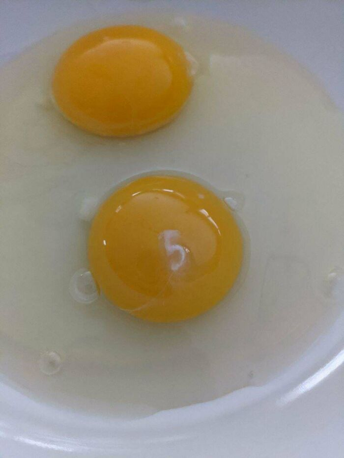 My Raw Egg Has The Number 5 On Its Yolk