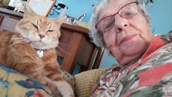 My 90-Year-Old Nana And Her 23-Year-Old Cat Love Sending Me Goodnight Selfies