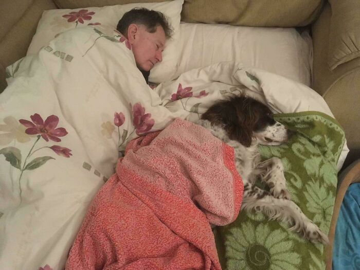 Padre durmiendo en el sofá cama con el perro, porque ya es mayor y no puede subir las escaleras. Así no se queda solo