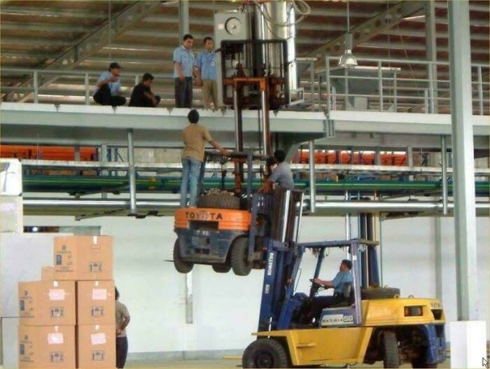 Look At The Mama Forklift Holding The Little One!