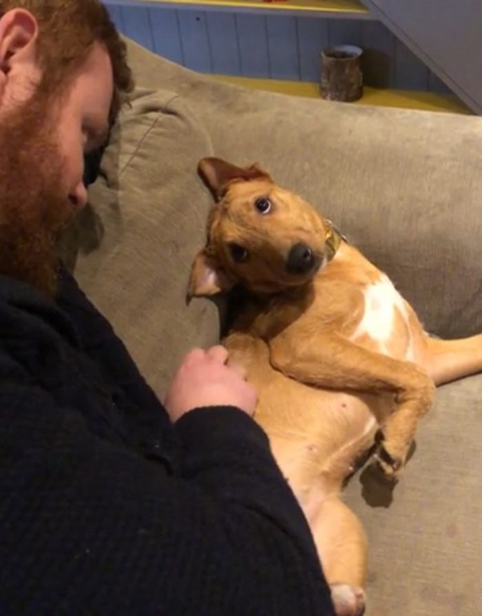 How Our Rescue Pup Looks At My Husband