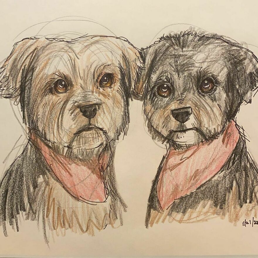 Pet Portraits For Charity