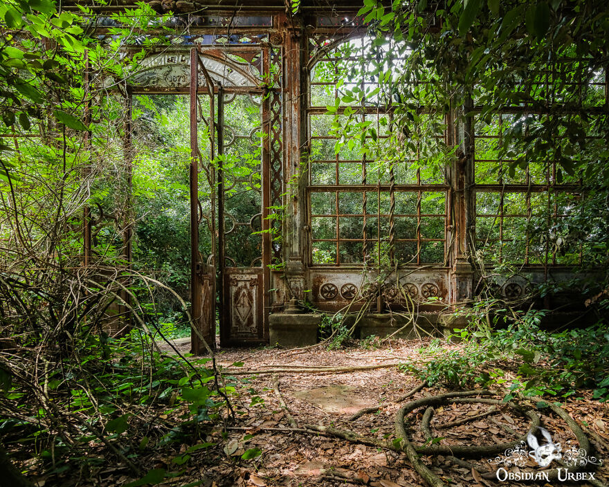 Dense Overgrowth Shrouds This Greenhouse, The Wrought Ironwork Rusted Brown As Years Pass