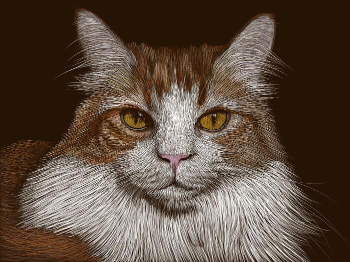 Nando Plopcat Kennedy - My First Paid Commission! Drawn On Adobe Fresco