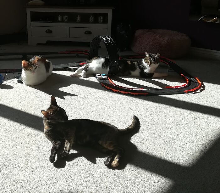 Sunbathing Round The Scalextric