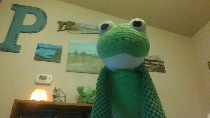 A Scentsy Frog. I Was Obsessed With Frogs. (And Still Am!