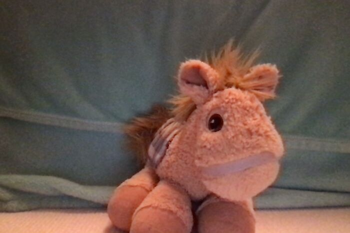 This Is My Stuffed Horse From When I Was Younger!