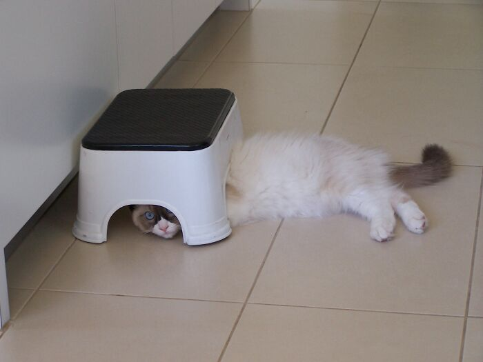 Nobody Can See Me Here...