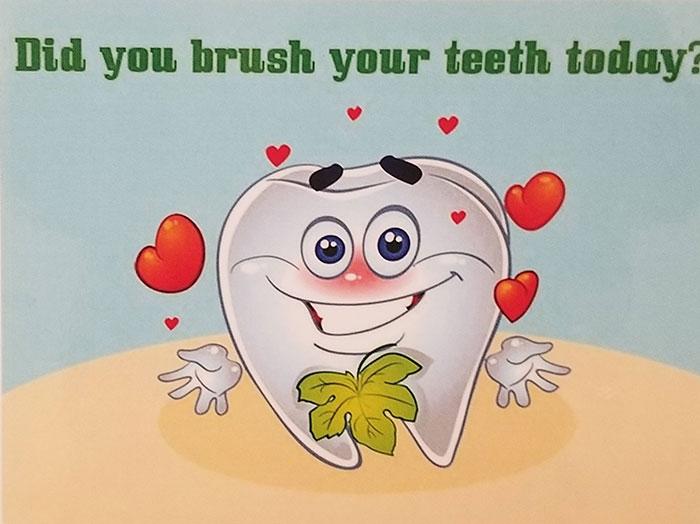 La implicación de que este diente tiene genitales