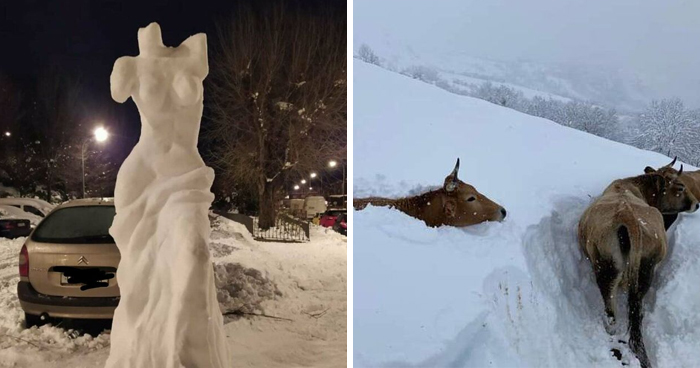 Spain Is Currently Witnessing Their Biggest Snowfall In Decades And This Is How The Unusual Sight Looks