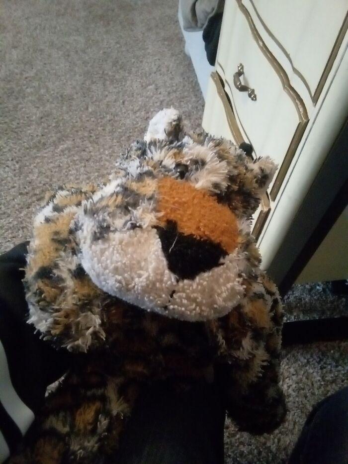 Larry The Leopard! Had Him Since Kindergarten