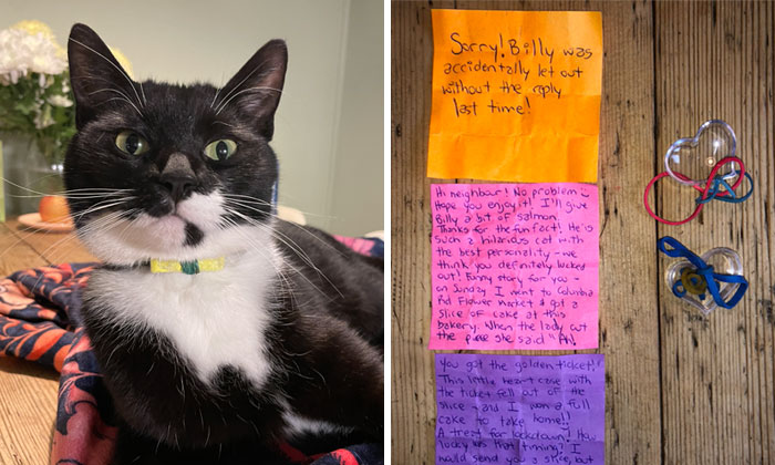 Cat Brings Its Parents A Note From The Neighbors He Visits, They Become Pen Pals With The Cat As Their Postman