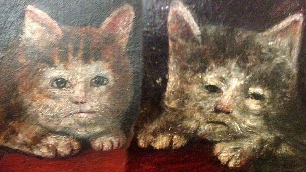 cats-60015243b09a1.jpg