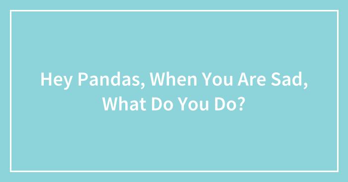 Hey Pandas, When You Are Sad, What Do You Do? (Closed)
