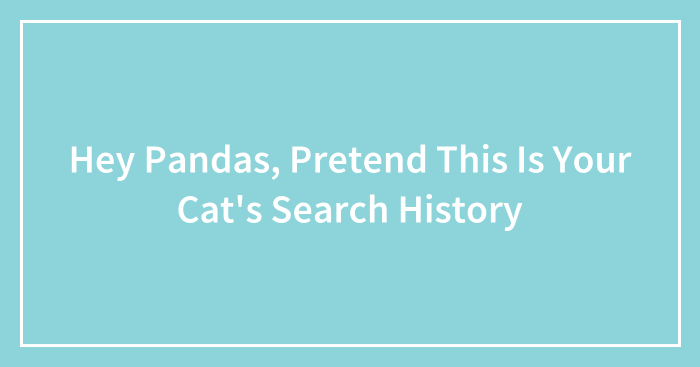 Hey Pandas, Pretend This Is Your Cat's Search History