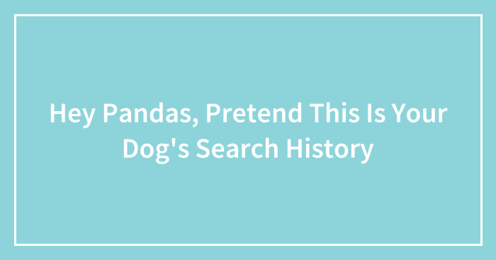 Hey Pandas, Pretend This Is Your Dog's Search History