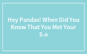 Hey Pandas, When Did You Know That You Met Your S/O?
