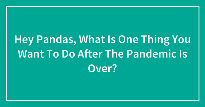 Hey Pandas, What Is One Thing You Want To Do After The Pandemic Is Over? (Closed)