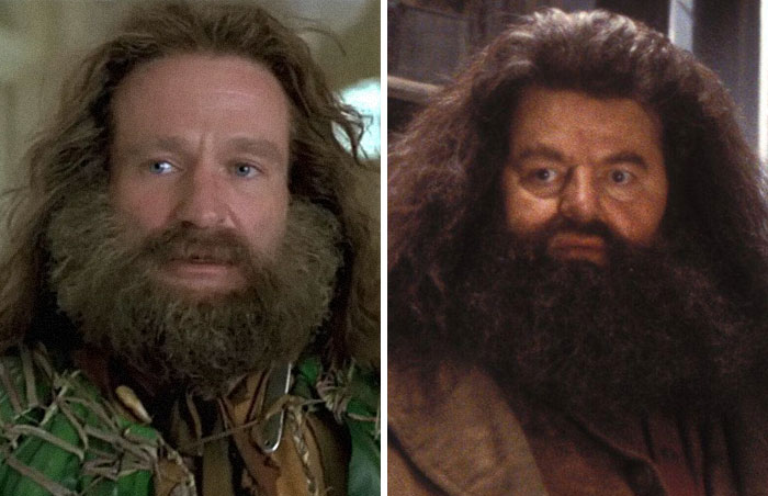 Robin Williams Wanted To Play Rubeus Hagrid In