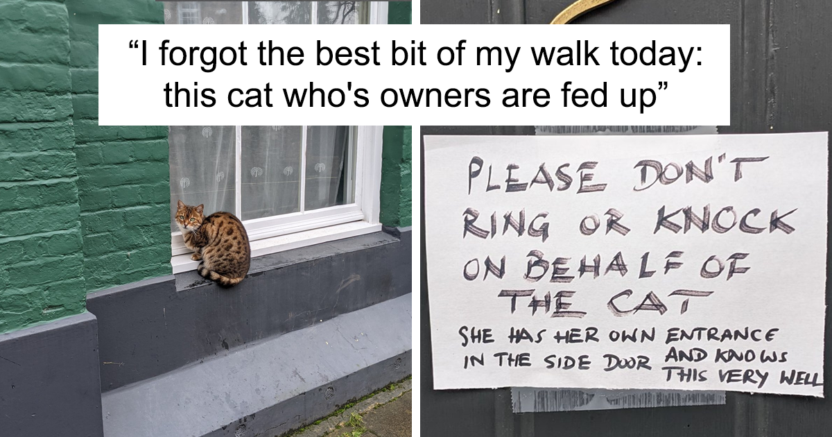 34 Funny Notes That Cat Owners Put Up To Warn Strangers - bored panda