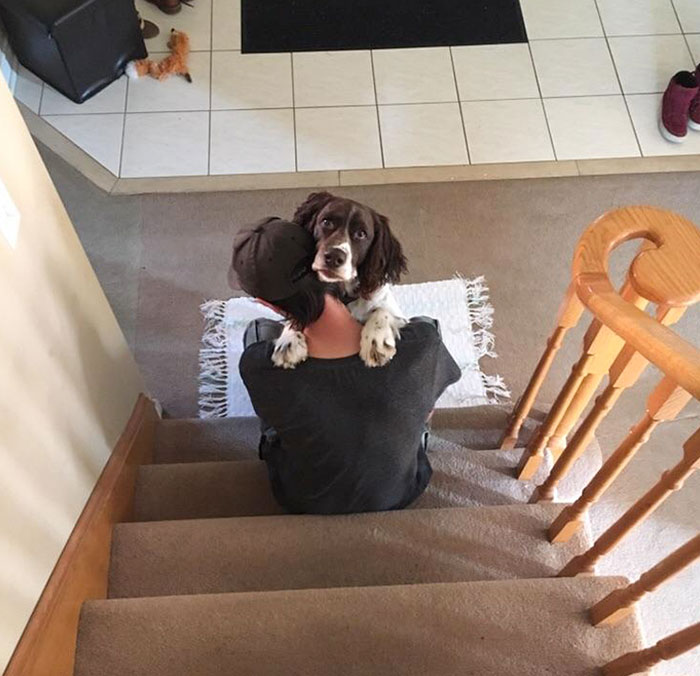 My Boyfriend And His Dog Give Each Other A Hug Every Morning And I Happened To Be Behind Him On The Stairs This Time