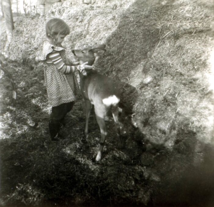 My Mom Ca. 1962, With A Baby Deer, East Germany.