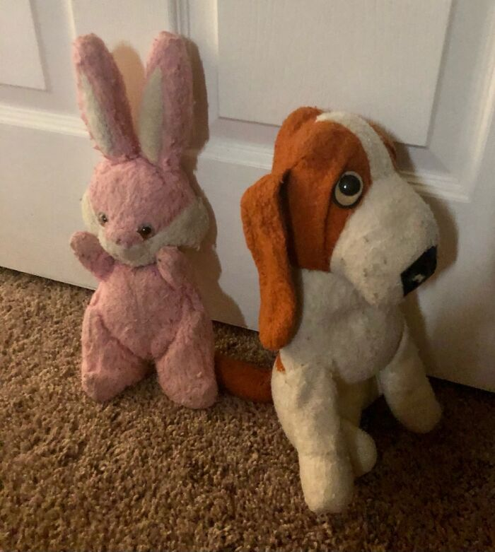 """My Fist Word Was """"Doggie"""" When I Saw It. """"Bun-Bun Came Not Long After. It's Been 40 Years ❤️"""